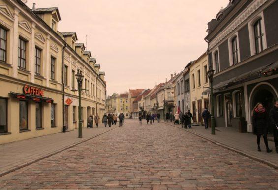 From SPEAK to founder of SPEAK Kaunas- Old Town, Kaunas